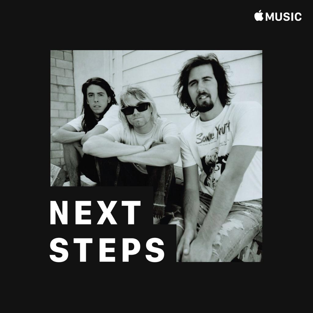 Nirvana: Next Steps
