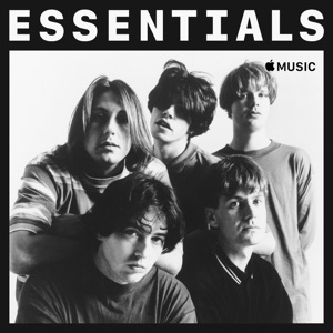 The Charlatans Essentials