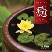 Healing - with Erhu