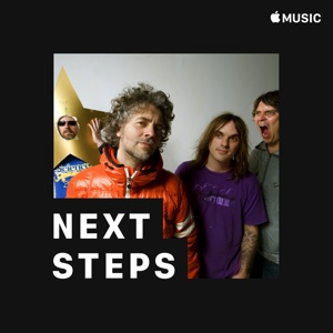 The Flaming Lips: Next Steps