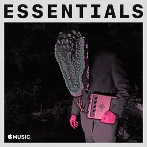 Avey Tare Essentials