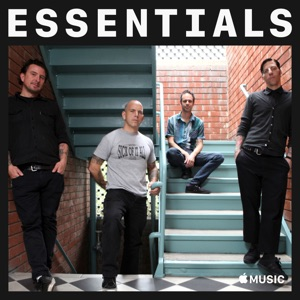 The Bouncing Souls Essentials