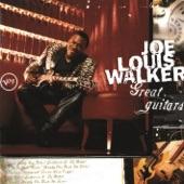 Joe Louis Walker - First Degree