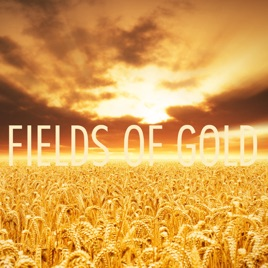 fields of gold feat lindsey stirling single by peter hollens