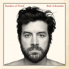 Bob Schneider - Wish the Wind Would Blow Me  artwork