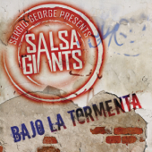 [Download] Bajo la Tormenta MP3