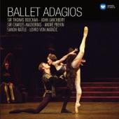 Robert Irving/Royal Philharmonic Orchestra - Pas de Deux (Act III)