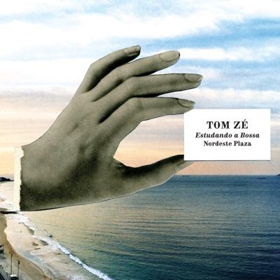 Estudando a Bossa - Tom Zé