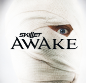 Hero  Skillet - Skillet