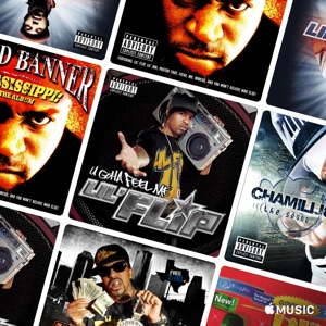 Lil' Flip Essentials