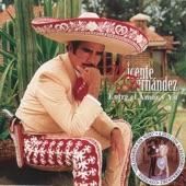 Vicente Fernández - Entre El Amor Y Yo (Album Version)