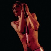 Iggy & the Stooges - Gimme Danger