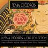 Pema Chödrön - The Pema Chodron Audio Collection artwork