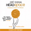 Andy Puddicombe - The Headspace Guide to... Mindfulness & Meditation (Unabridged) artwork