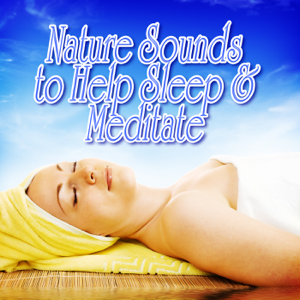 Nature Sound - Daytime Jungle Songs for Relaxation