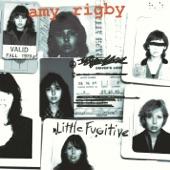 Amy Rigby - Girls Got It Bad