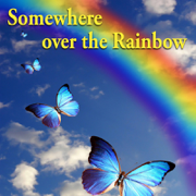Somewhere over the Rainbow (Radio Version) - Butterfly - Butterfly