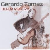 Gerardo Tamez - Tierra Mestiza