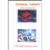 Physical Therapy - Physical Therapy artwork