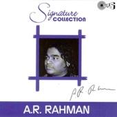Signature Collection A.R. Rahman