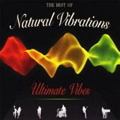 Natural Vibrations - Put Some Time