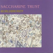 Saccharine Trust - No Compromise Here
