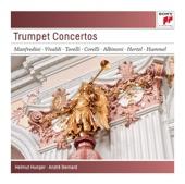 Vivaldi - Concerto for Mandolin Strings Harpsichord in D RV93 - I Solisti Veneti-C.Scimone