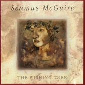 Séamus McGuire - This Wishing Tree