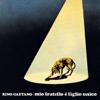 Rino Gaetano - Berta Filava artwork