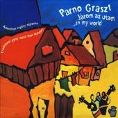 Parno Graszt - Kanak gijom / When I Was Walking