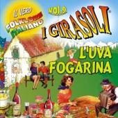 I Girasoli - L'uva fogarina