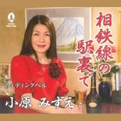 Weddingbell  Mizue Kohara - Mizue Kohara