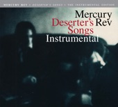 Mercury Rev - Goddess On a Highway