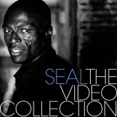 The Video Collection