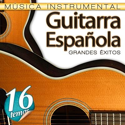 Si Tú Me Dices Ven Gipsy Flamenco Band Shazam
