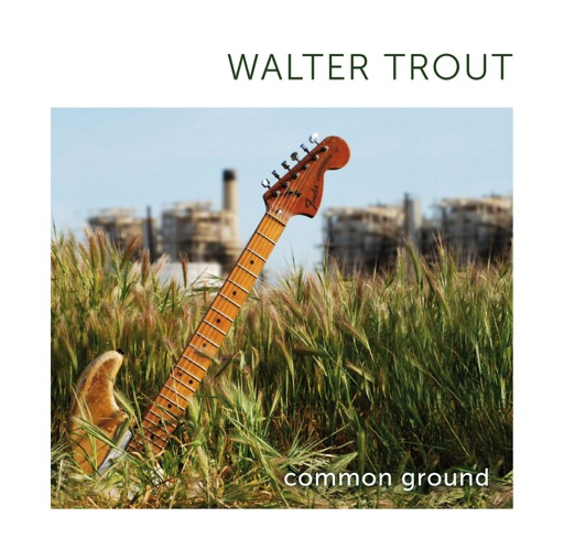 Art for Common Ground by Walter Trout