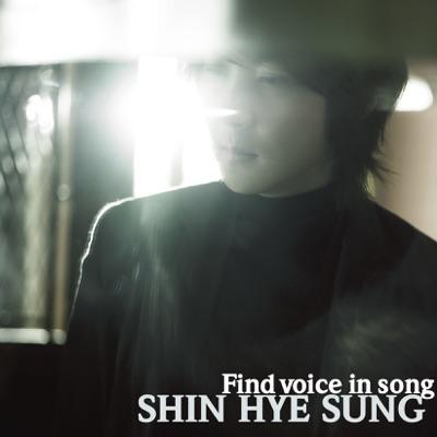 Find Voice in song - Shin Hye Sung