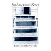 SubArachnoid Space - Square Wheels