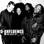 The Very Best of D-Influence