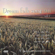 Dream Folk Songs 2000, Vol. 7 - Various Artists