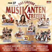 Das grosse Musikantentreffen, Folge 27 - Various Artists - Various Artists