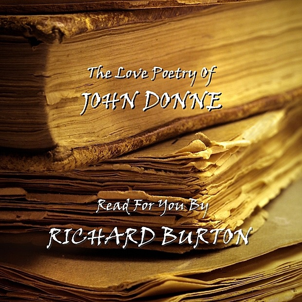 essays john donne the sun rising