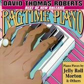 David Thomas Roberts - Honky Tonk Music