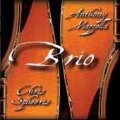 Chris Spheeris & Anthony Mazzella - Confluence