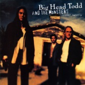 Big Head Todd and The Monsters - Groove Thing