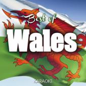 The Best of Wales Karaoke