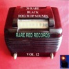 30 Rare Black Doo-Wop Sounds Vol. 12