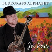 Joe Ross - The Place Where I Was Born