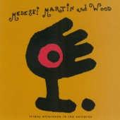 Medeski Martin & Wood - We're so Happy