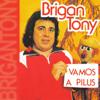 BriganTony - A Sucalora grafismos